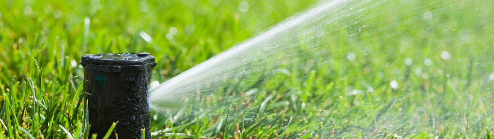 Diffuser watering lawn