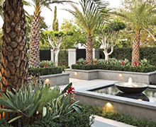 Tropical landscaping Marbella