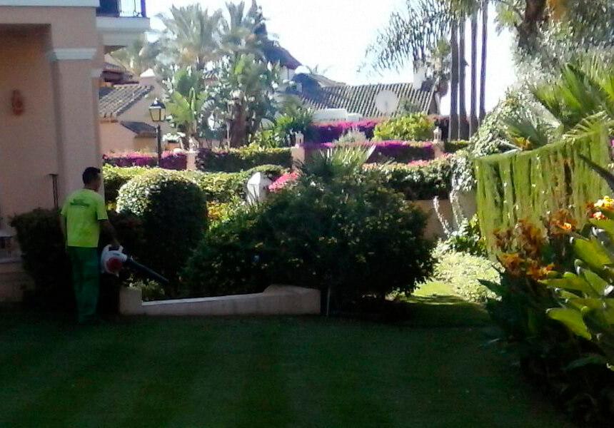 Gardener cleaning garden