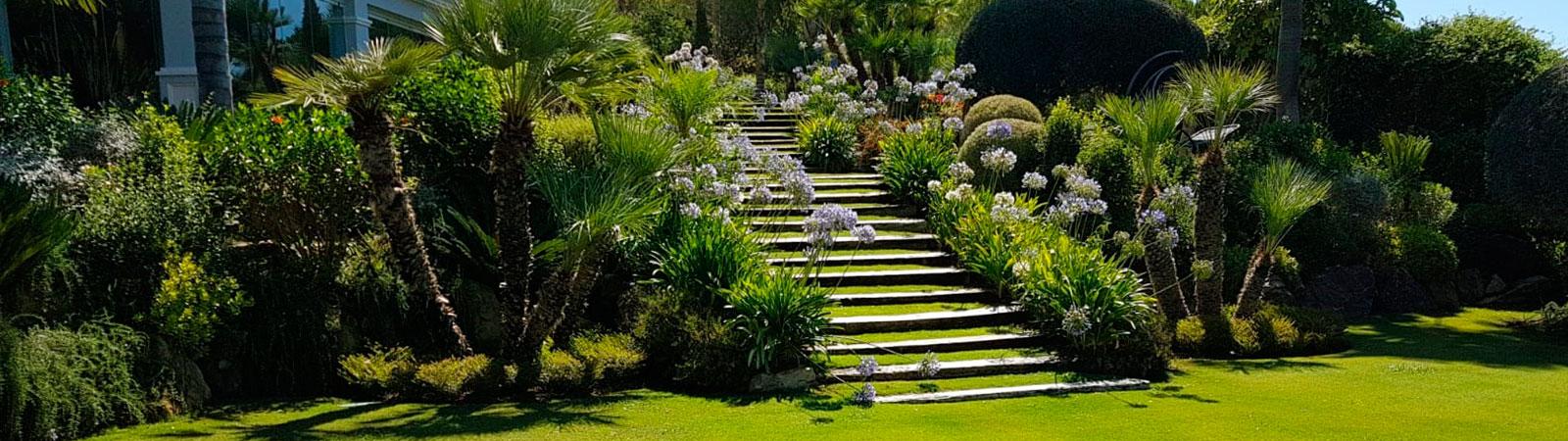 Jardín con plantas nuevas