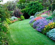 Contraste de colores en diseño de jardín