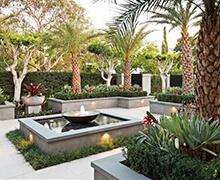 Paisajismo tropical en lujoso jardín