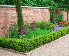 colorida jardinera en jardín